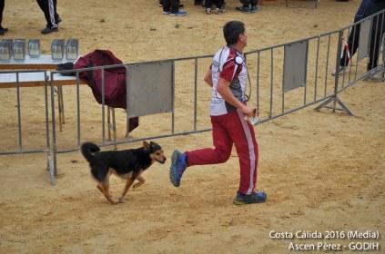 Costa Calida16_Media_Ascen_675